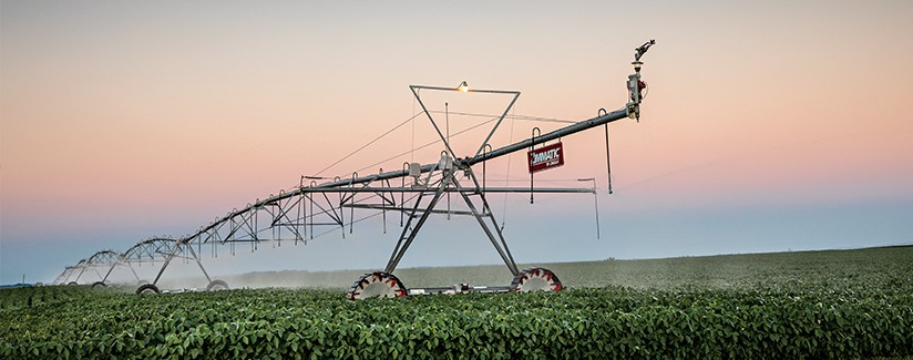 Effective Irrigation Management Boosts Soybean Yields