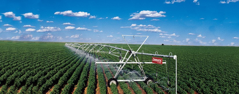 Irrigation Scheduling Can Help Maximize Cotton Production