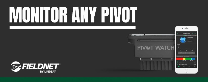 Five Things You Should Know About Pivot Watch