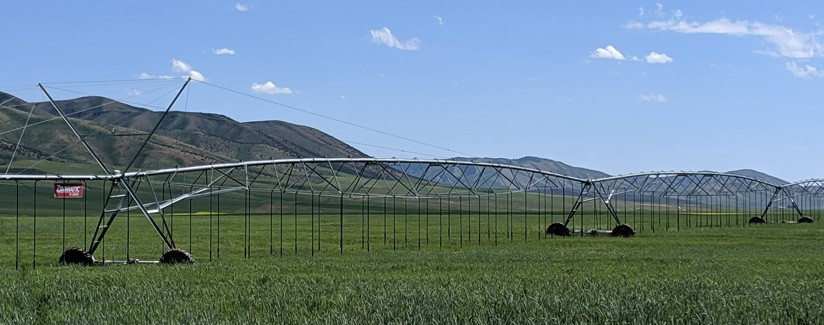 Flow Meters Help Idaho Grower Improve Water Efficiency