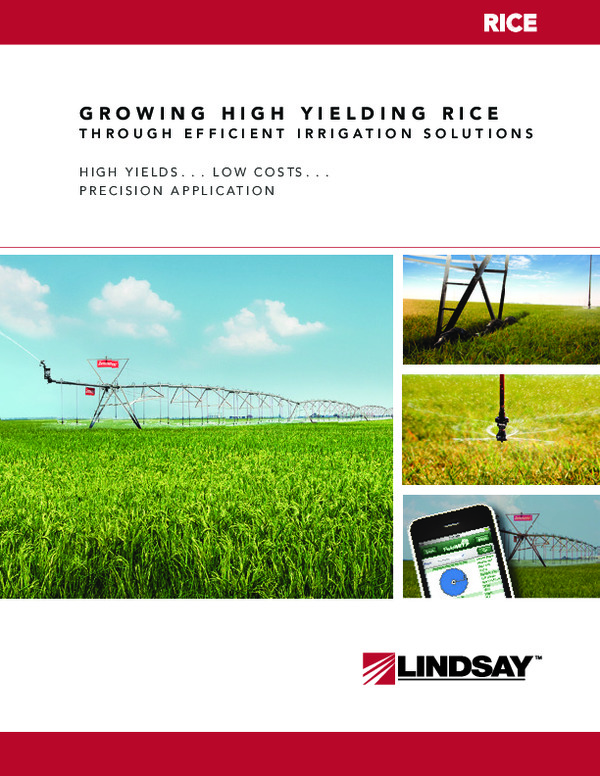 Increasing Rice Yields
