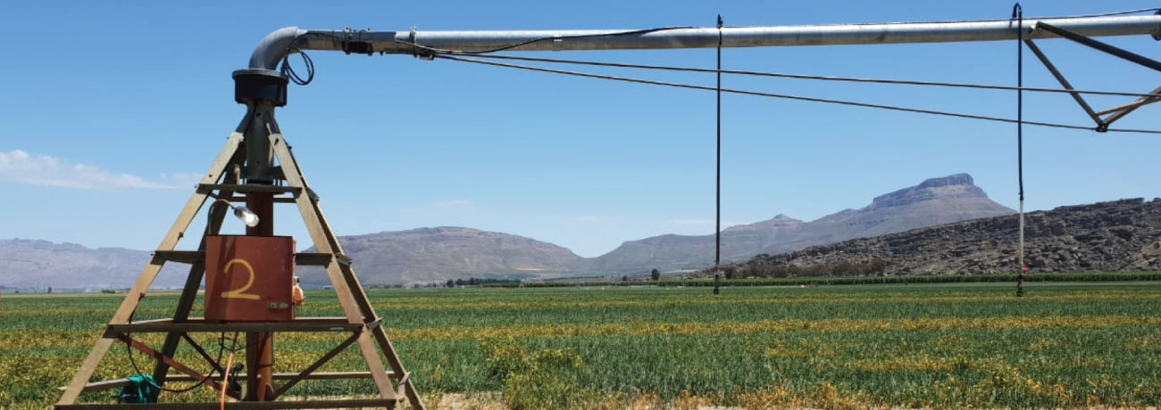 FieldNET Helps South African Operation Maximize Efficiency