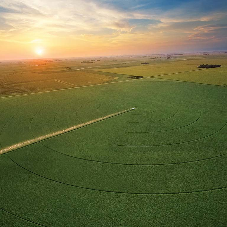 See how pivot irrigation can increase yields.